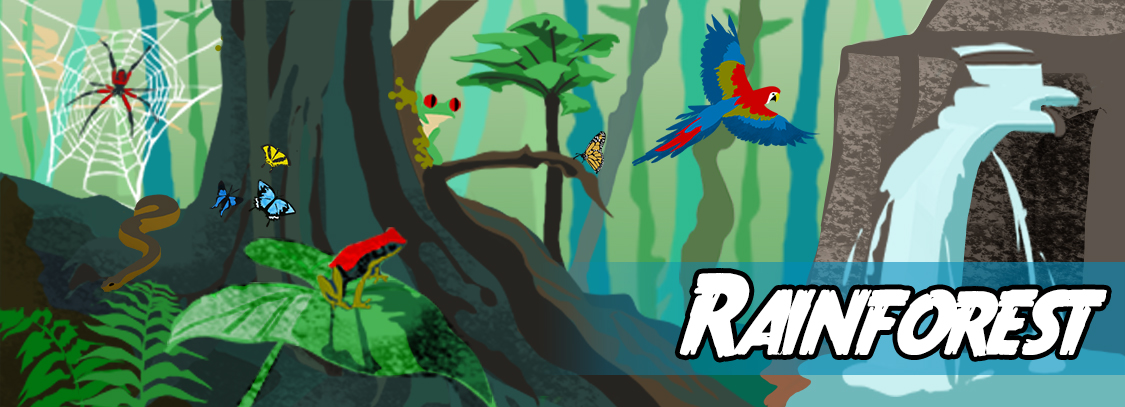 Write a story about the rainforest